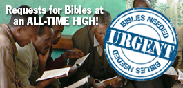 Urgent! Bibles are needed right now!